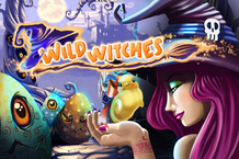 Wild Witches™ Online Slot